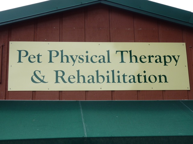 Pet Physical Therapy & Rehabilitation